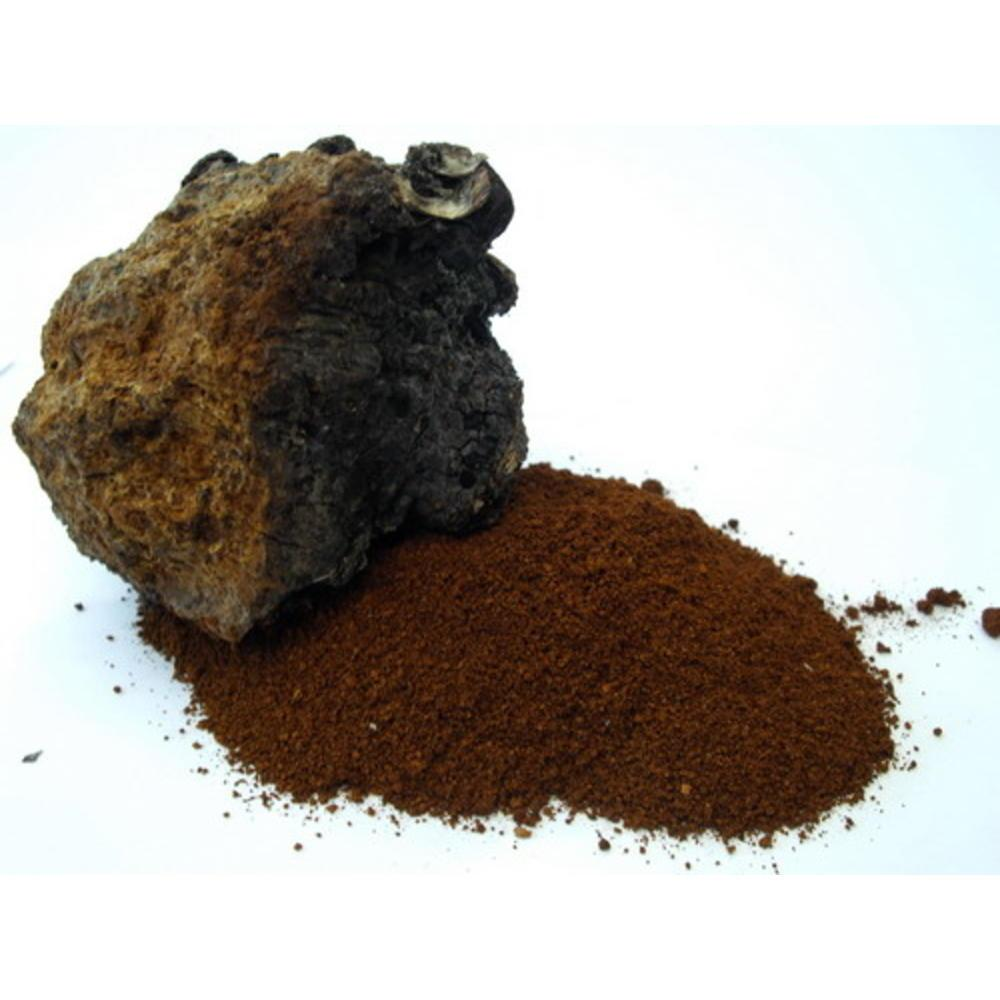 CHAGA Mushroom powder 60 γρ.