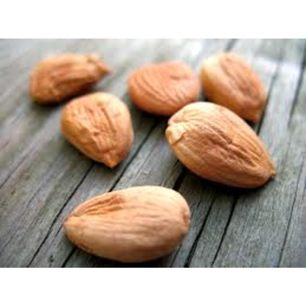 Apricot Kernels bio 100 γρ.