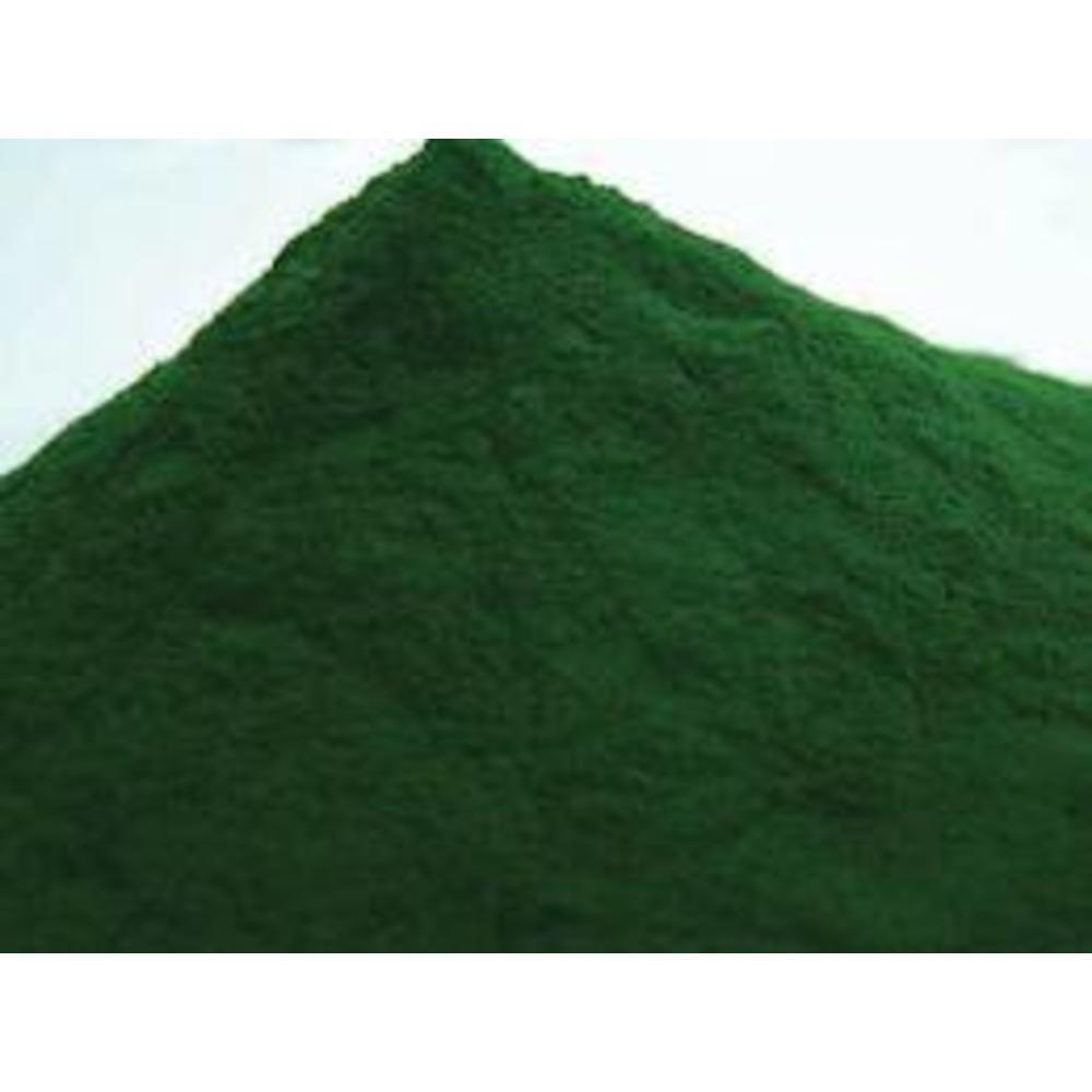 Chlorella Organic Powder 100gr.