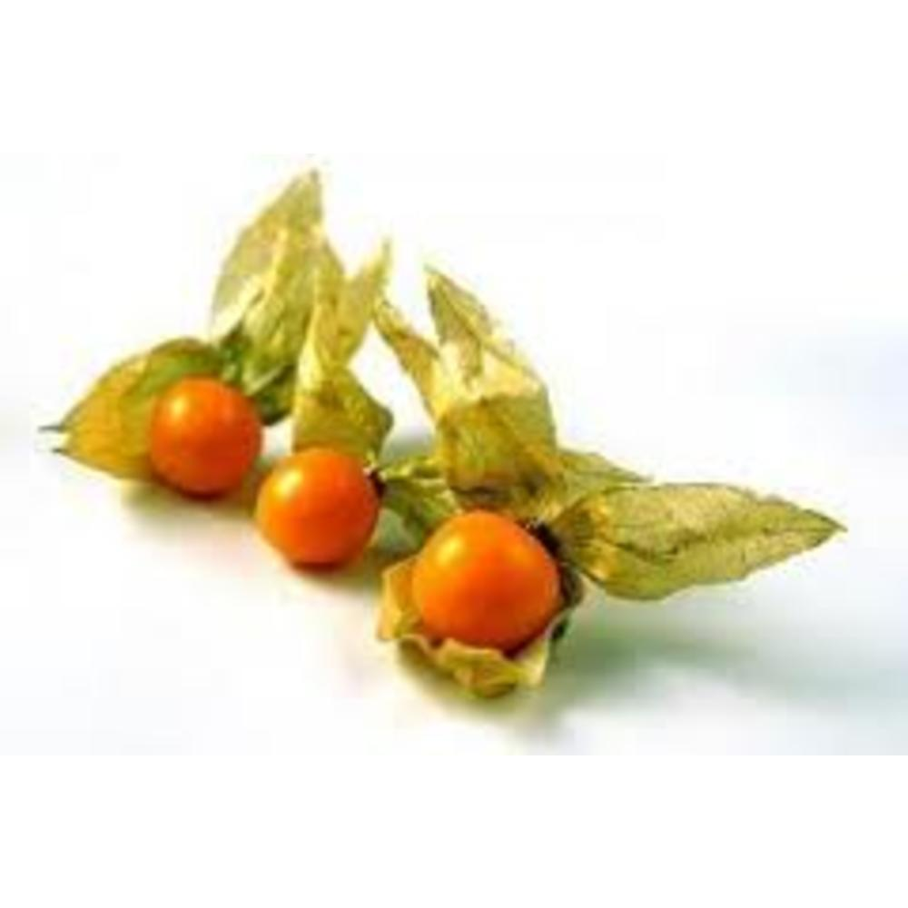Incan-Golden Berries 100 γρ.